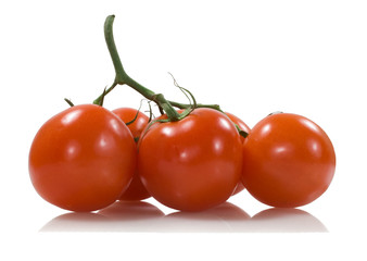 five red tomatoes with a green stick