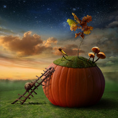 Funny Poster with Snail-Astronomer and Pumkin-Observatory