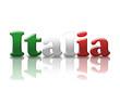 Italia Logo Riflesso