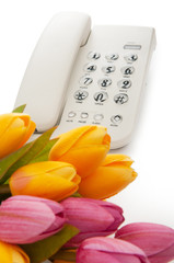 Romantic concept with phone and tulip flowers