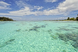 Amazing crystalline water, Moorea, French Polynesia