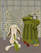 Biedny królik i alkohol