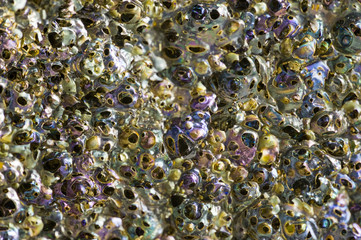 Macro background of porous lava rock with iridescent colors.