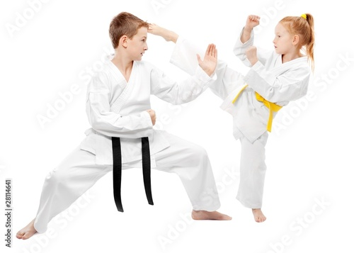 Martial arts sparring - 28114641