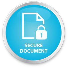 Process Flow Icon - Secure Document