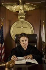 Judge sitting in court, portrait