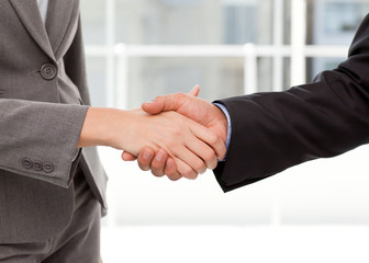 Close up of two businesspeople shaking their hands