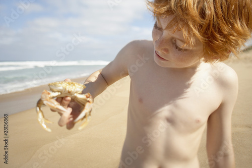 Boy holding crab on beach, portrait