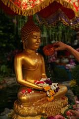 Buddha, meditazione