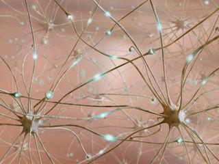 Collegamento tra neuroni