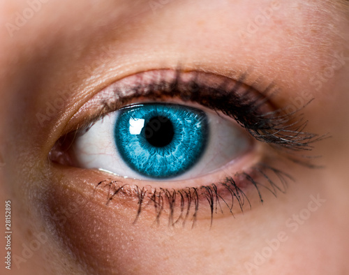 Fototapeten,augenbrauen,blau,eye,faces