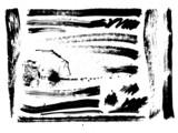 Fototapety set of brush strokes, stains, splashes, vector