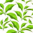 Seamless pattern with fresh green leaves on white