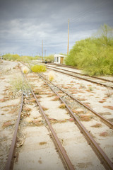 overgrown tracks, Arizona, USA
