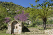 Springtime at Mystras, turkish fountain - Peloponnese