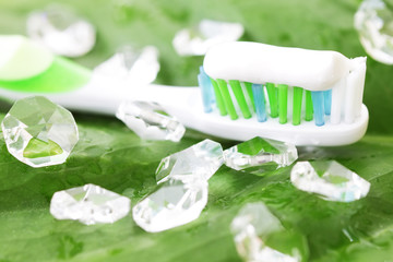 Toothbrush on green leaf
