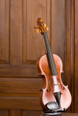 Violin with Wooden Door