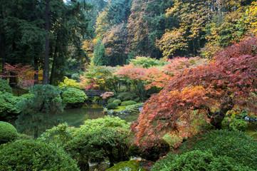 Wooden bridge, Japanese Garden