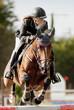 cavaliere au jumping
