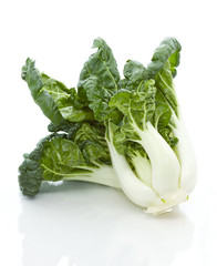 Chinese Vegetable, Bok Choy