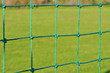 Net with green grass on background