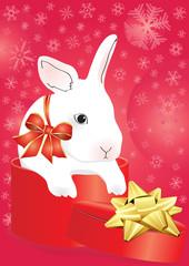 rabbit with ribbon