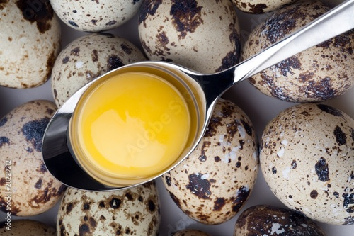 Egg yolk in spoon