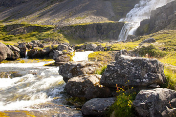 Dynjandi waterfall -  Iceland, Westfjords.