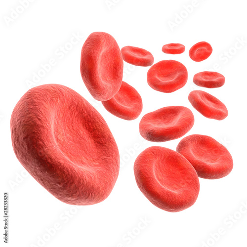 3d Isolated blood cells