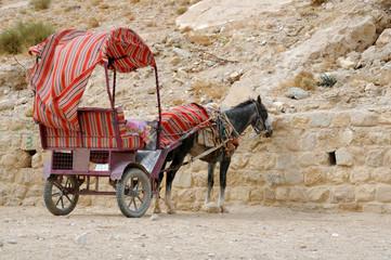 Donkey and Cart at Petra