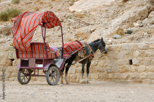 Aluminium Ezel Donkey and Cart at Petra