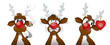 Rudolph collection 2