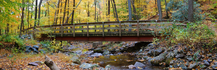 Autumn wood bridge panorama