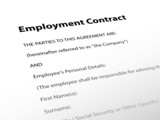 Employment Contract (document human resources job employee form) poster