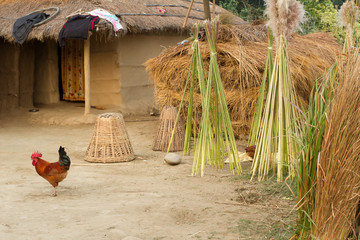 farm huts in Nepal, Terai