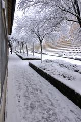 tempête de neige 09