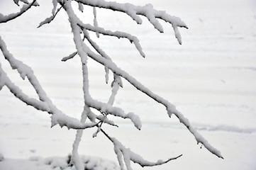 tempête de neige 06