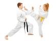 Leinwanddruck Bild - Martial arts sparring