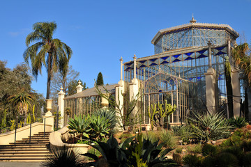 Palm house in a botanic garden