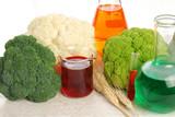 GMO Food poster