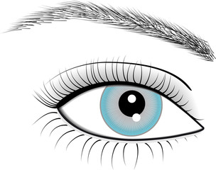 Illustration of eye of woman