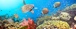 canvas print picture - Underwater panorama