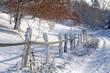 Wanderweg am Weidezaun im Schnee