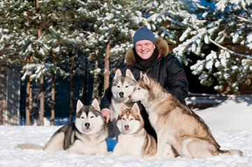 Man with group of siberian husky at winter