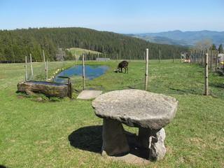 table en pierre et auge en bois a schupferen en alsace