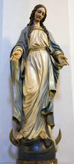 holy Mary from Vienna church