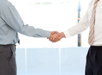 Close up of two businessmen concluding a deal by shaking their h