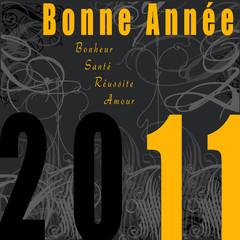 carte de voeux bonne année 2011