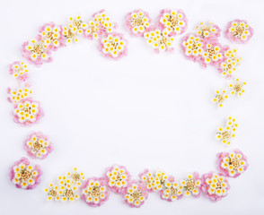 Framework of Pink Caprise Lantana flowers