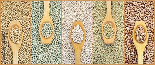 Collage of dried lentils, peas, soybeans, beans with spoon